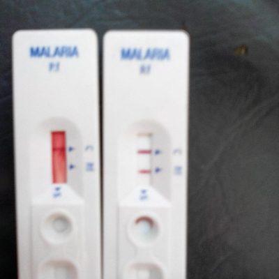 Le testeur de malaria