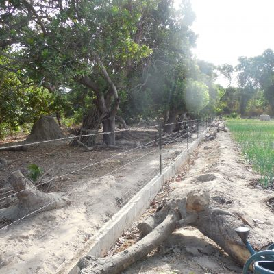 La clôture en fil de fer barbelé